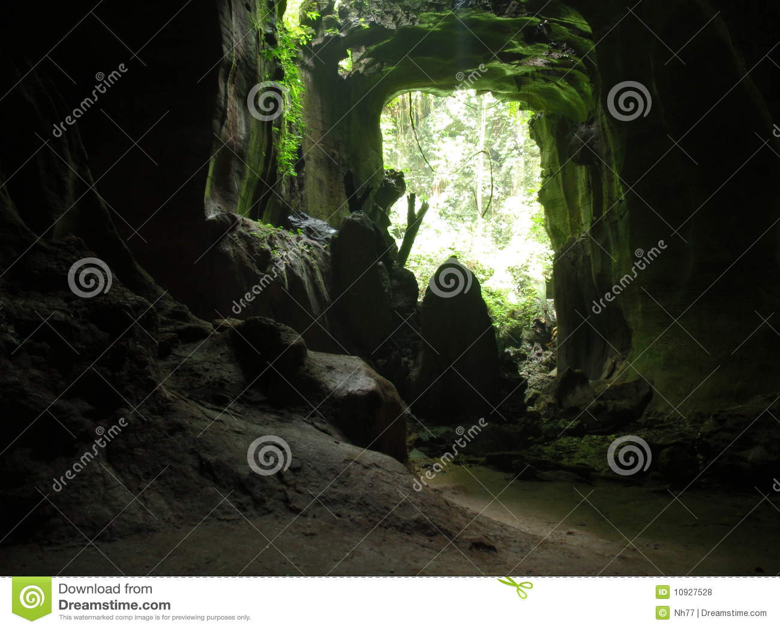 Wild jungle cave