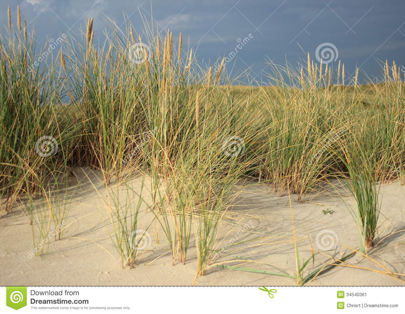 how to make a sand dune