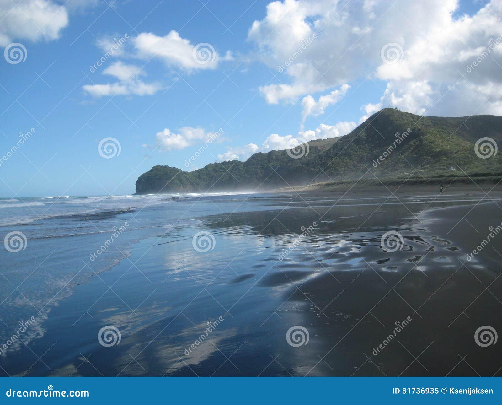 Wild Piha Beach