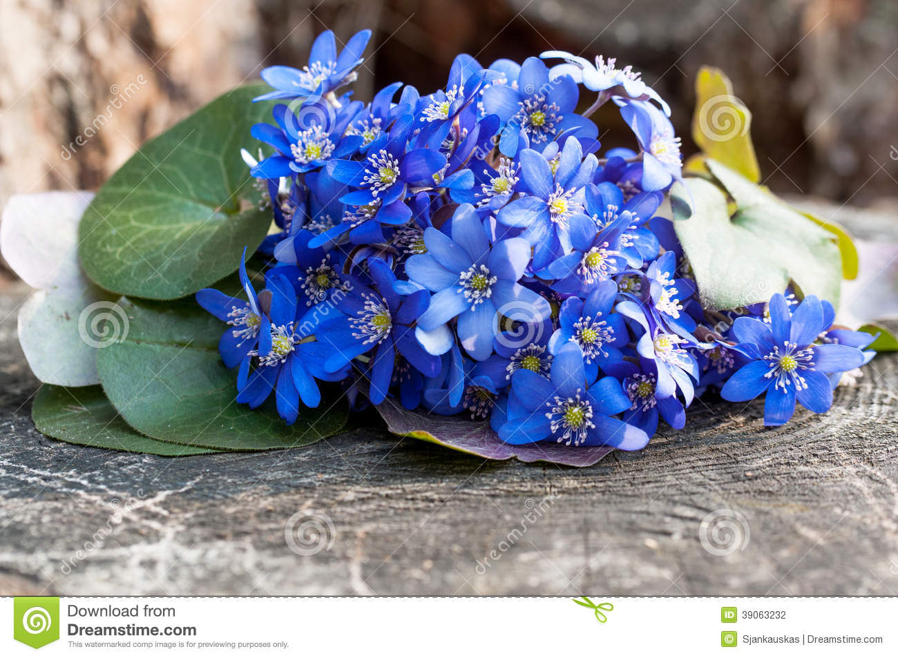 Wild Violet Flowers Bouquet Stock Photo - Image: 39063232