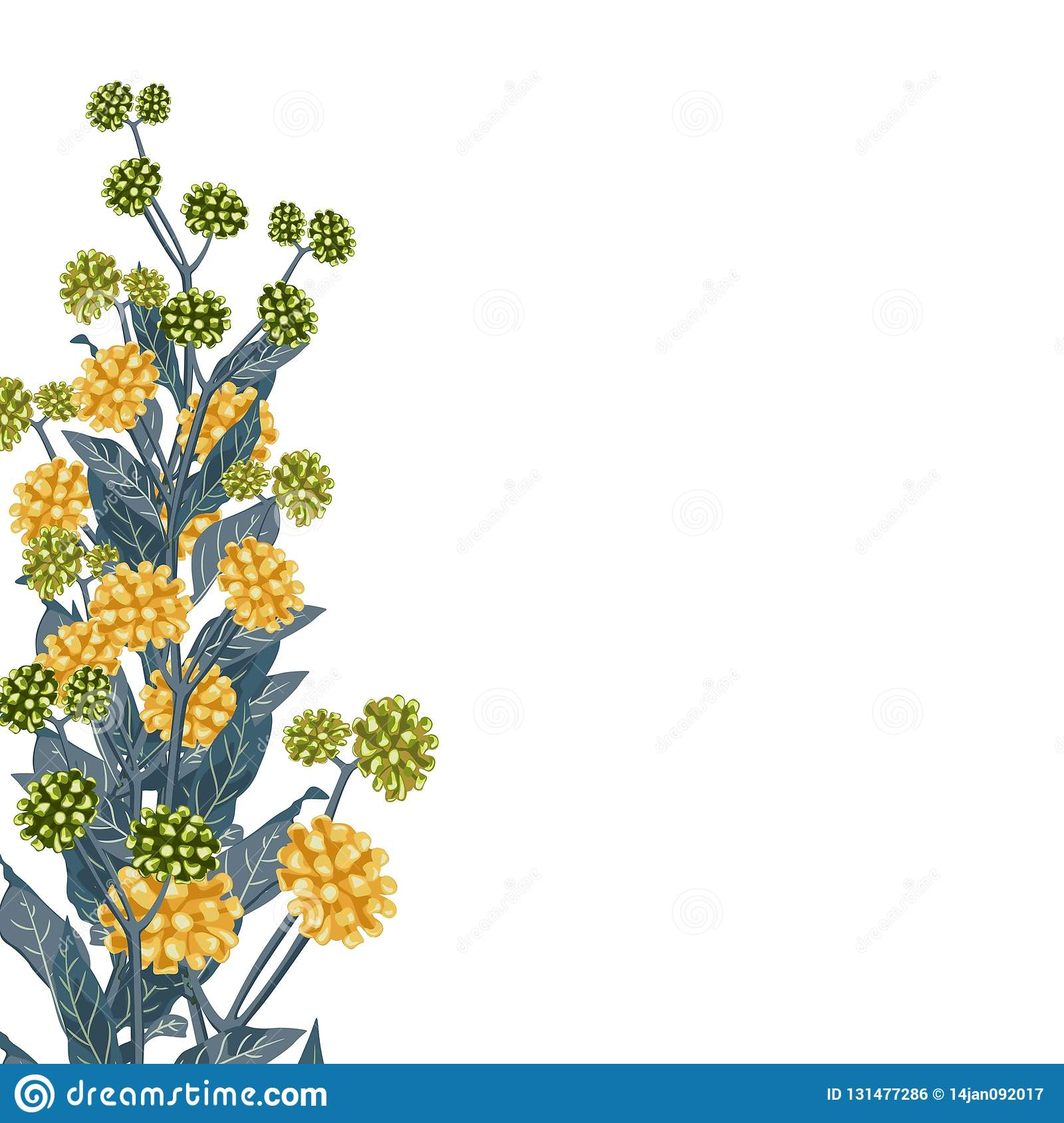 Wild yellow flowers with blue leaves. A spring decorative bouquet.