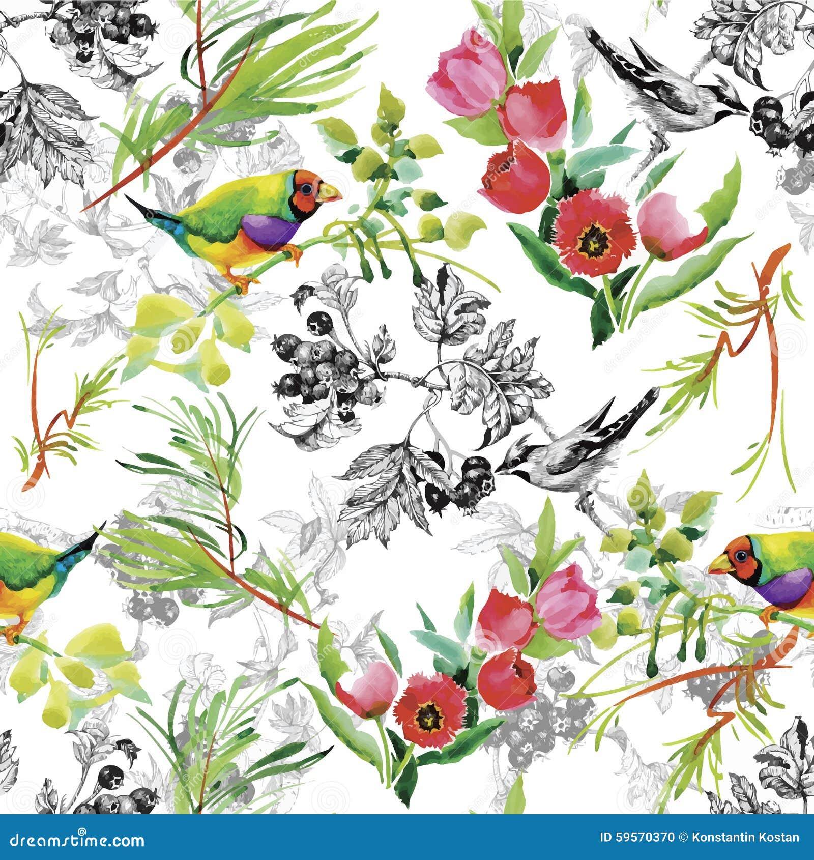Wilde exotische Vögel des Aquarells auf nahtlosem Muster der Blumen auf weißem Hintergrund
