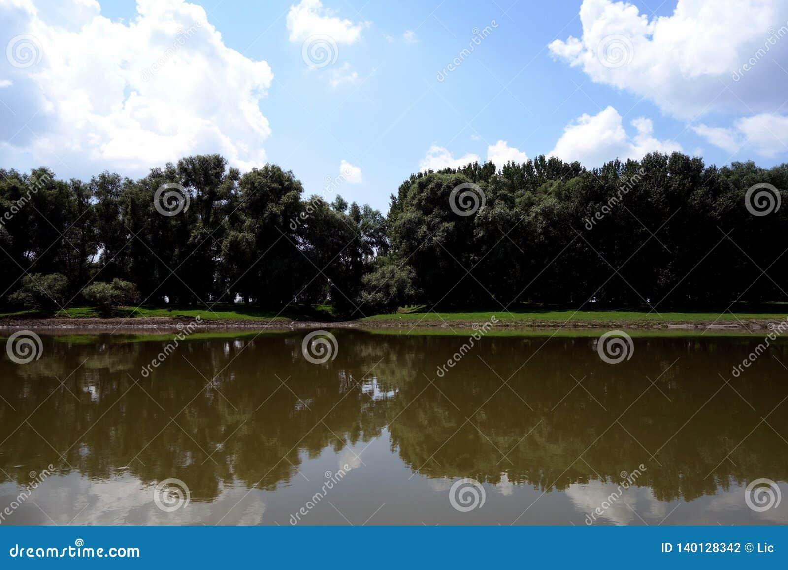 Wilde plaatsen op de wapens van Donau
