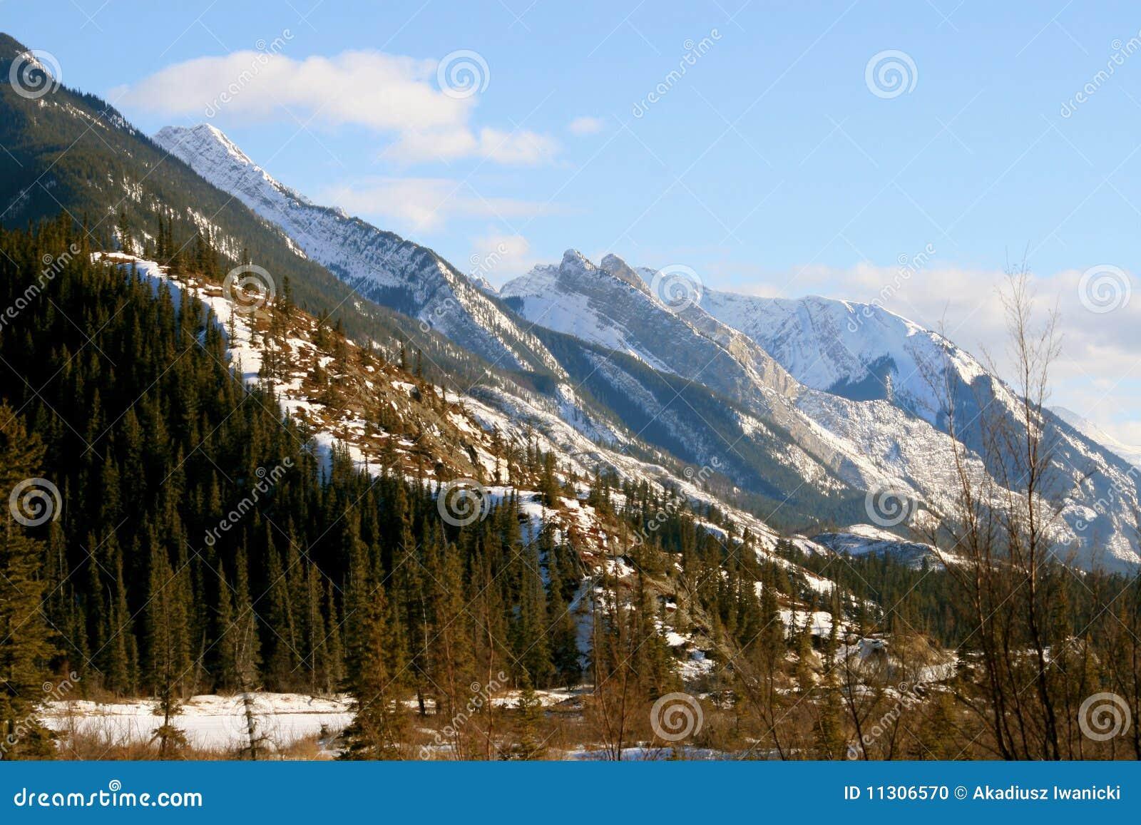 Wilde Rockies, Jaspis