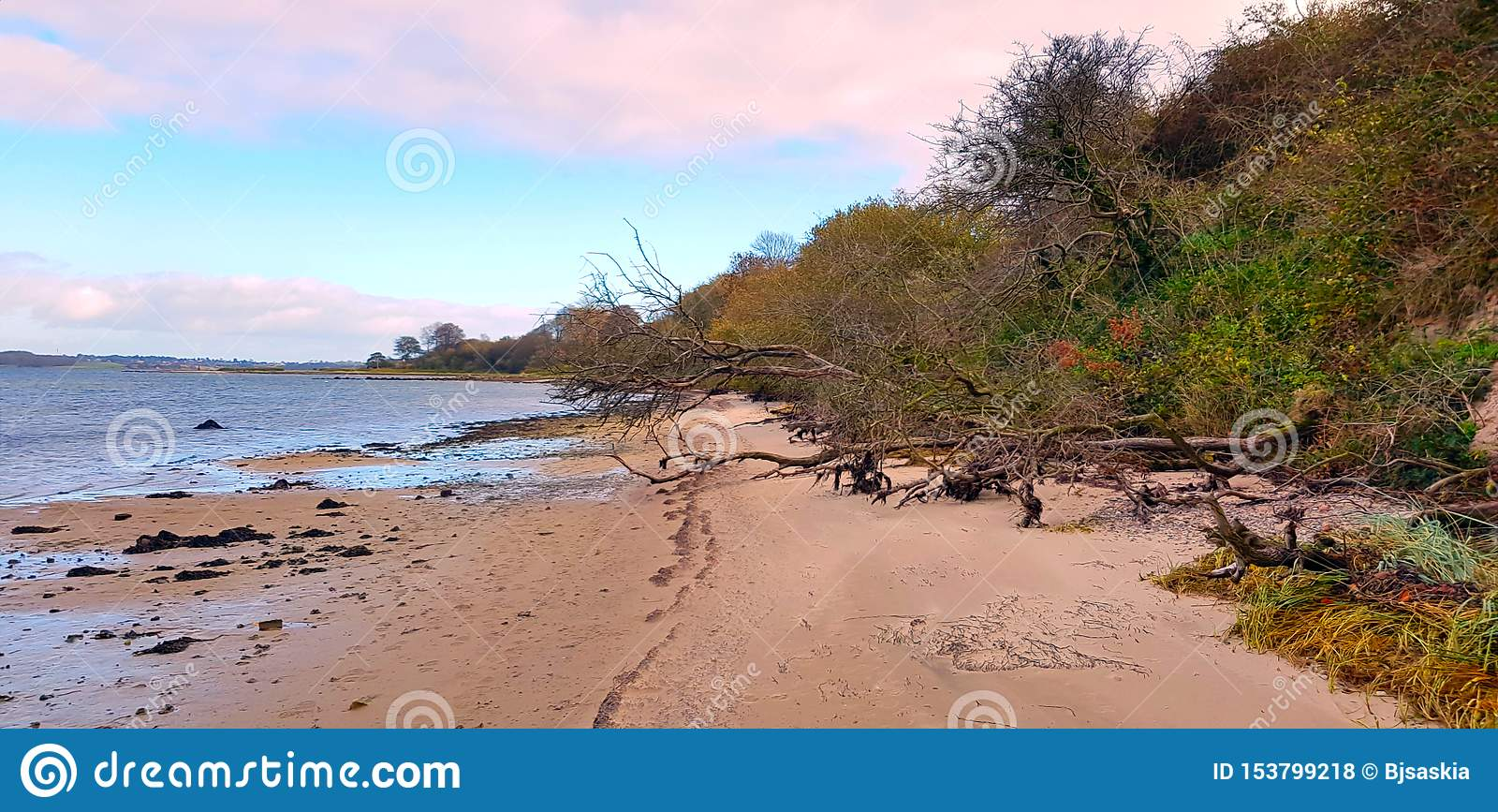 Wilde strandidylle