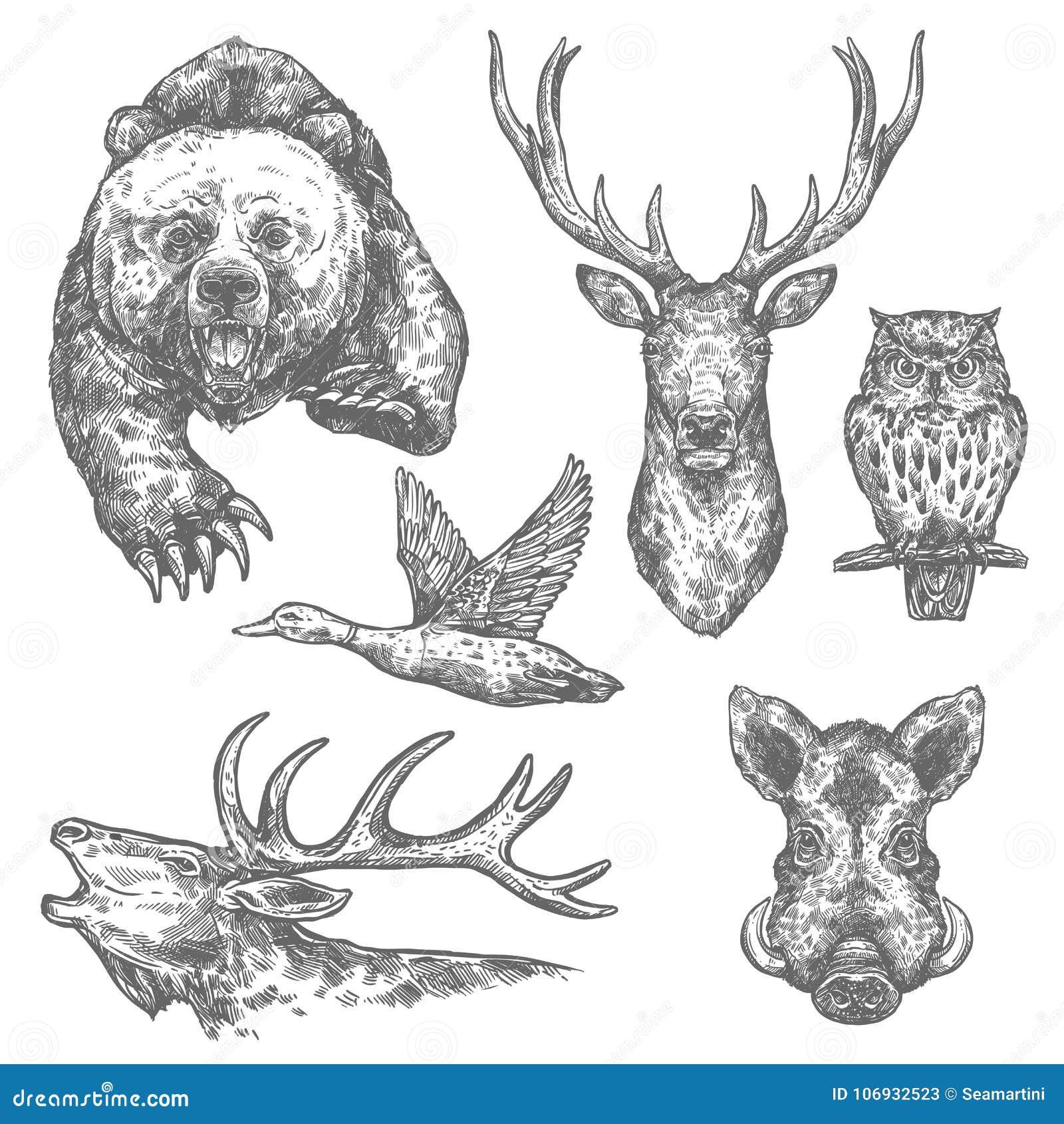 Wilde van de jachtdieren en vogels schetsen