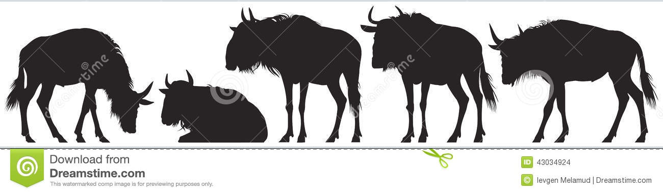 Wildebeest, gnu antelope vector silhouettes