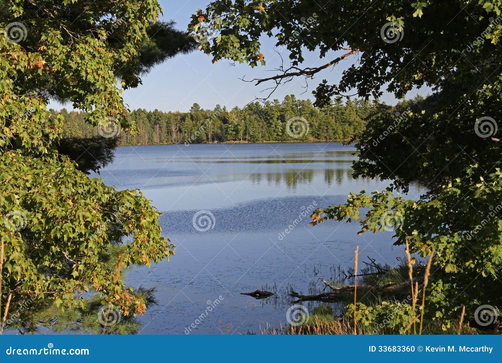 Wilderness See gestaltet durch Bäume
