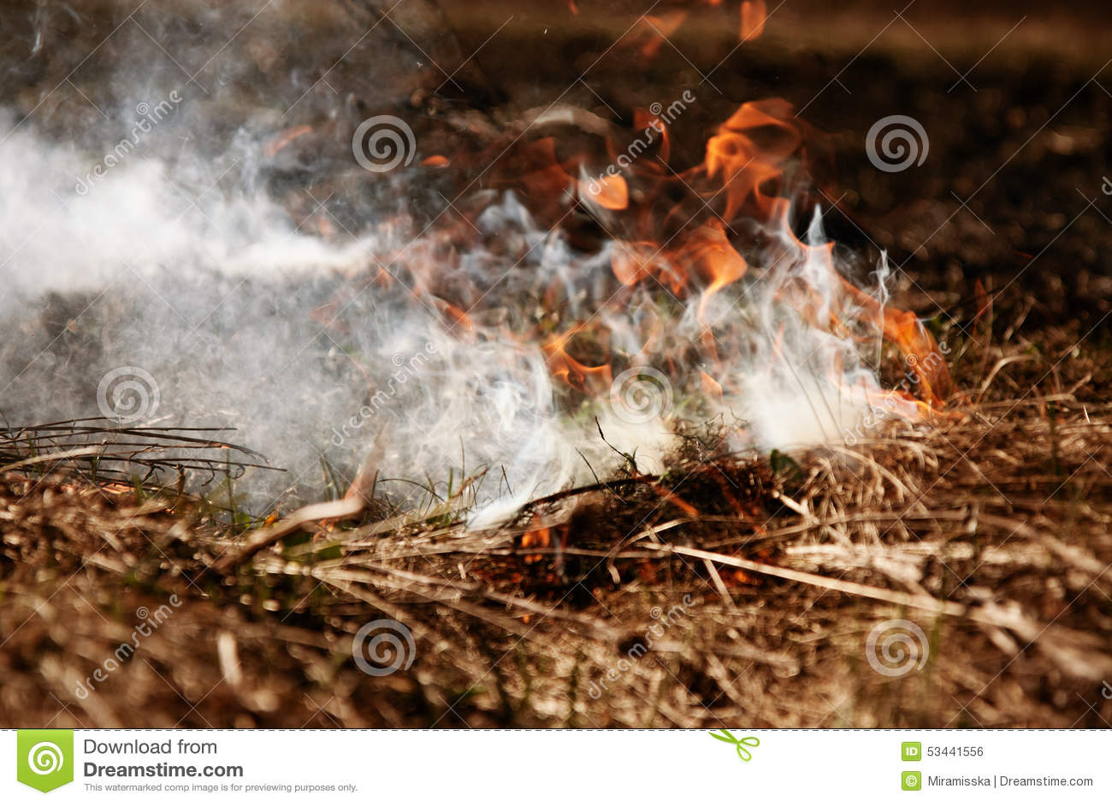 Wildfire Feuer Globale Erwärmung, Klimakatastrophe Conce