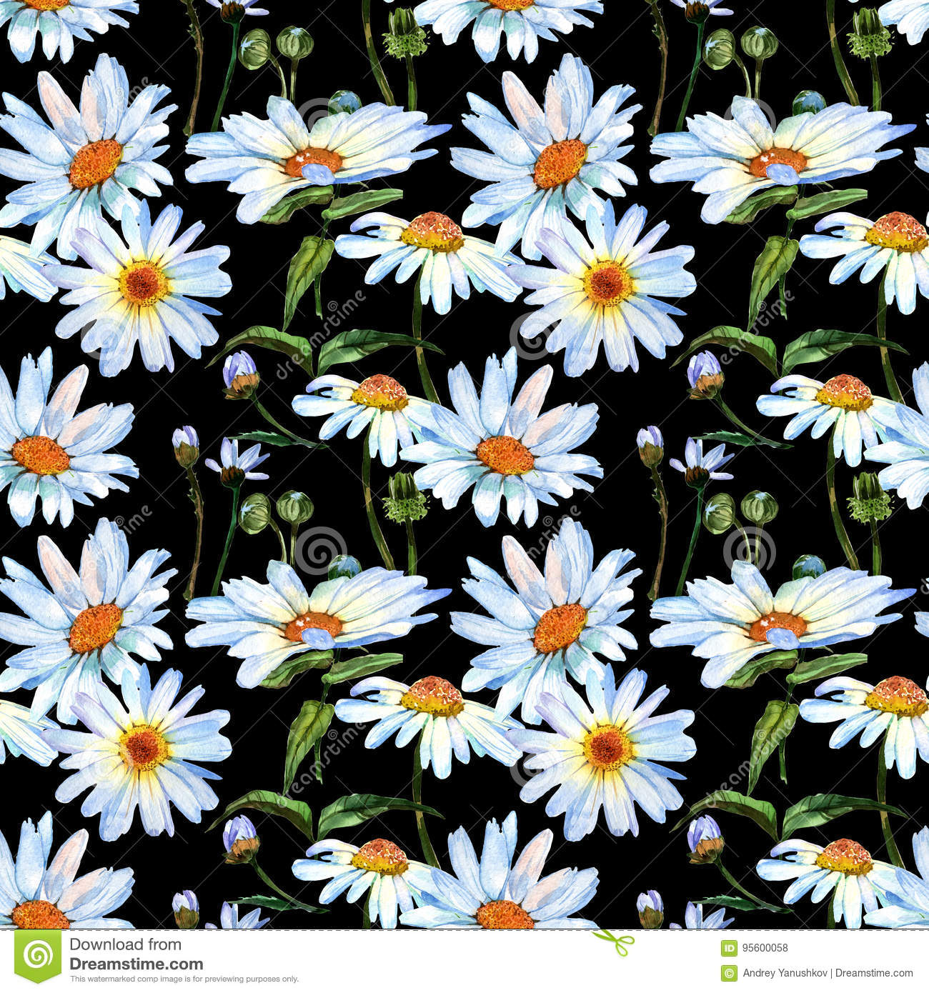 Wildflower Daisy Flower Pattern In A Watercolor Style Stock Photo