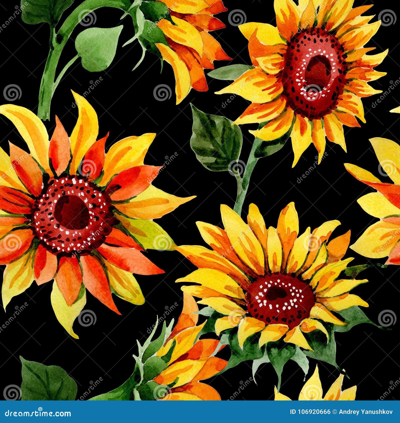 Wildflower kwiatu słonecznikowy wzór w akwarela stylu