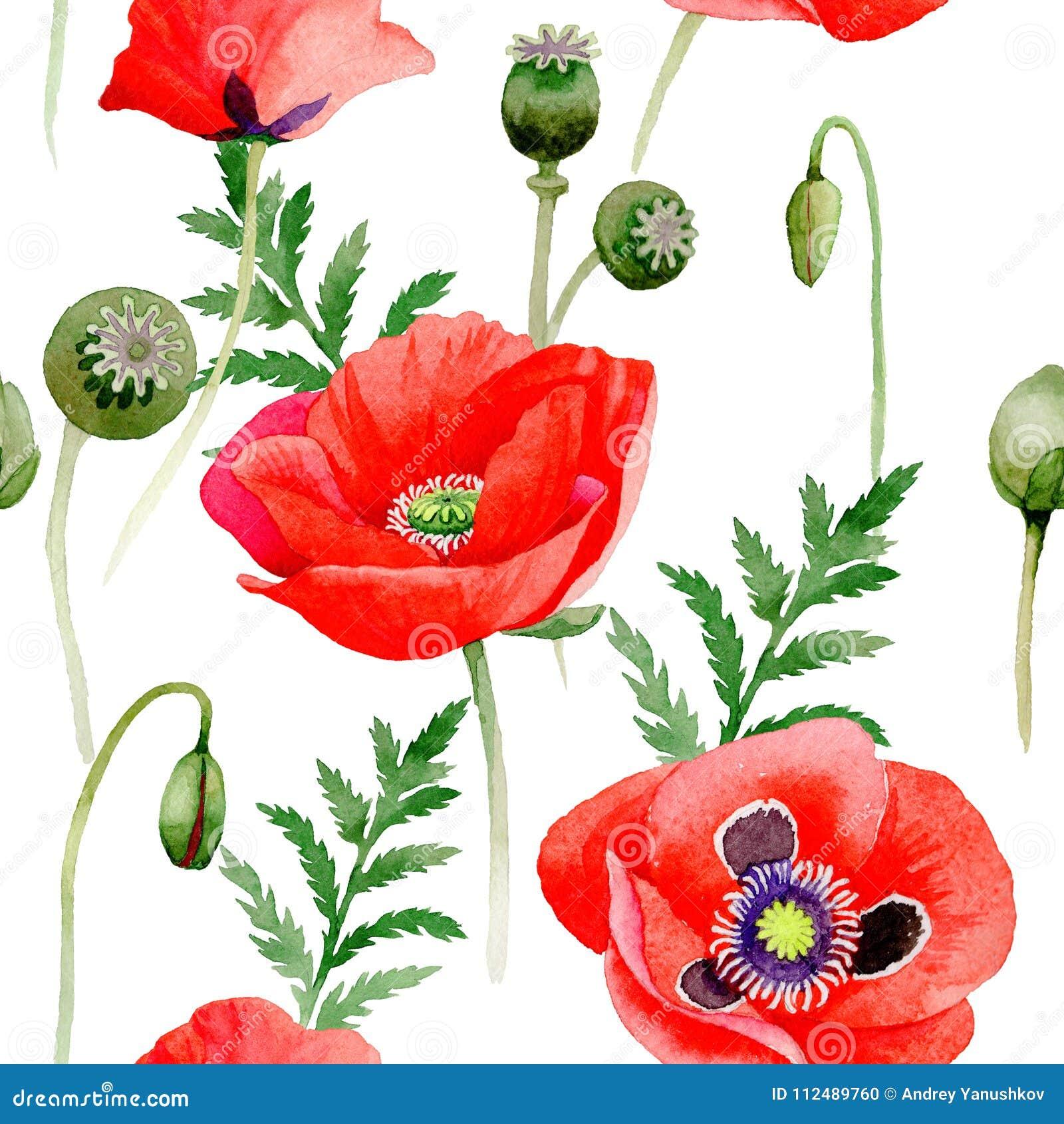 Wildflower Poppy Flower Pattern In A Watercolor Style Stock Photo