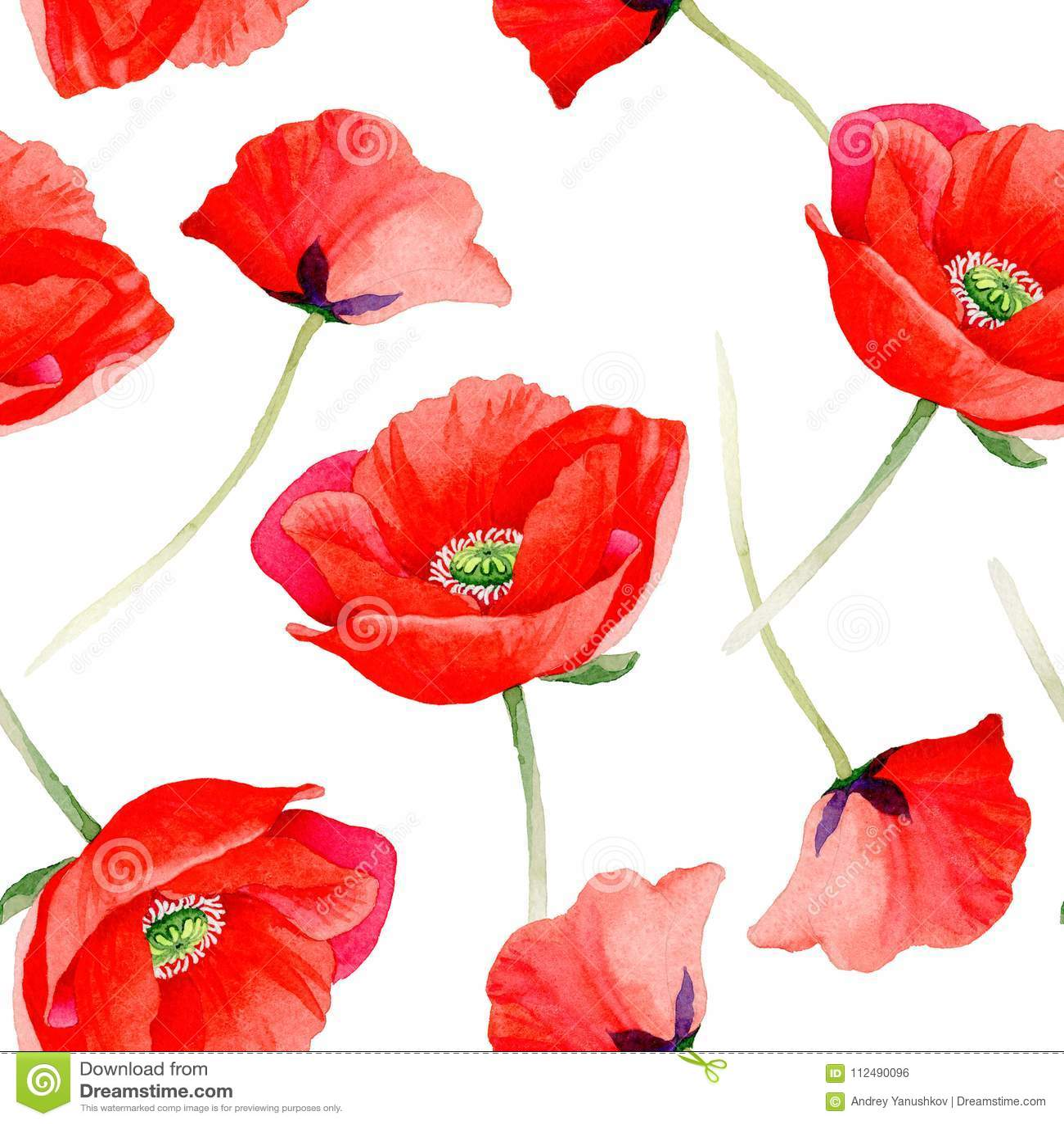 wildflower poppy flower pattern in a watercolor style stock