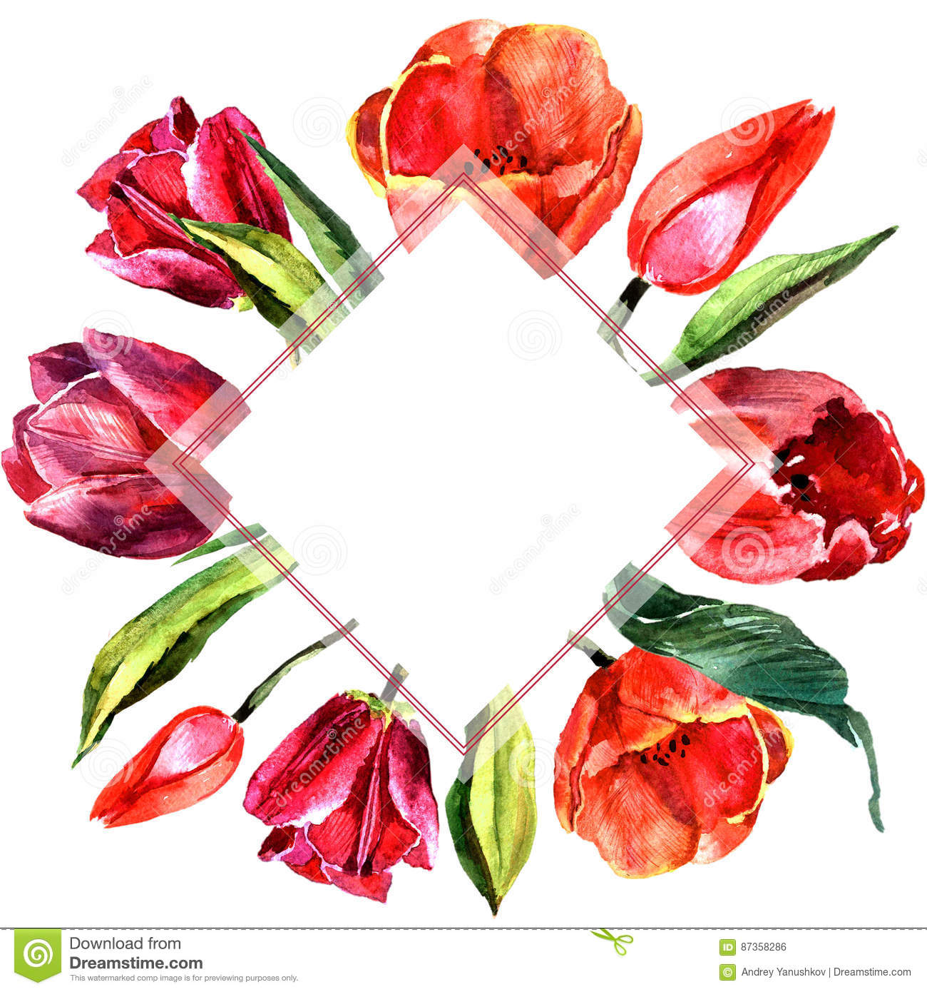 Wildflower Tulip Flower Frame In A Watercolor Style Isolated Stock