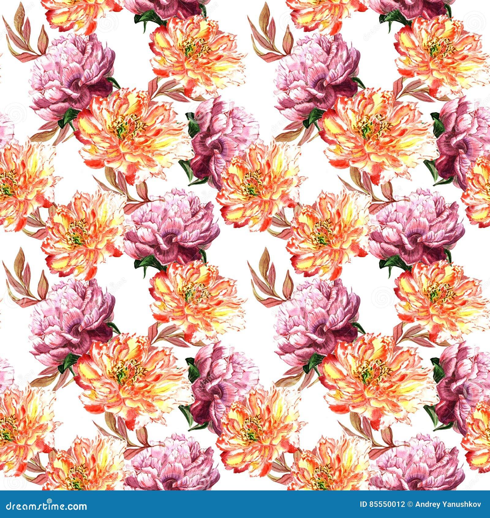 Wildflowerpfingstrosen-Blumenmuster in einer Aquarellart lokalisiert