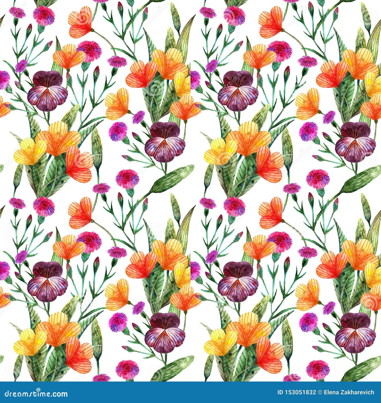 Wildflowers dell acquerello Modello senza cuciture di vari fiori del prato