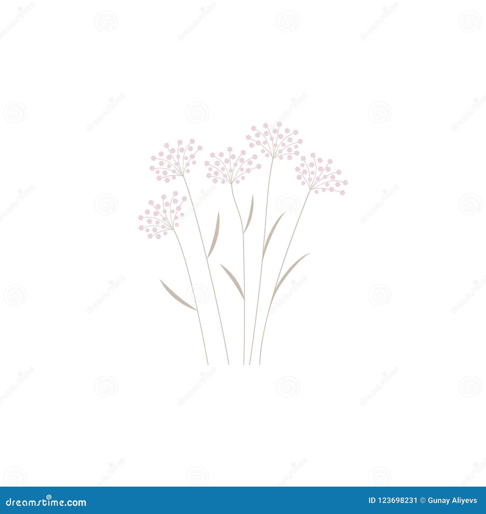 Wildflowers Elemento del fiore per i apps mobili di web e di concetto I wildflowers colorati possono essere usati per il web ed i