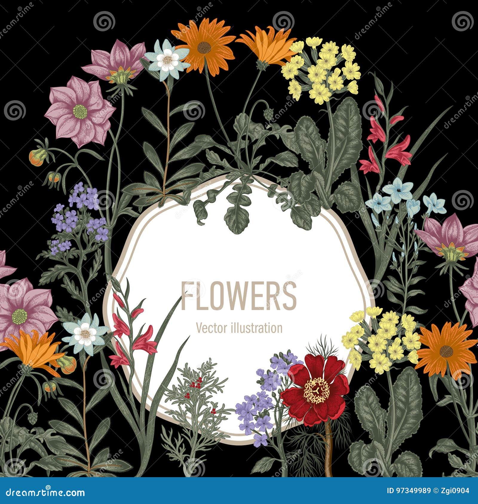 Wildflowers. Vector illustration in vintage style. Festive postcard.