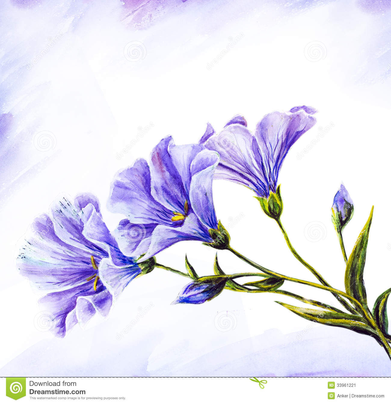 wildflowers watercolor painting stock illustration illustration