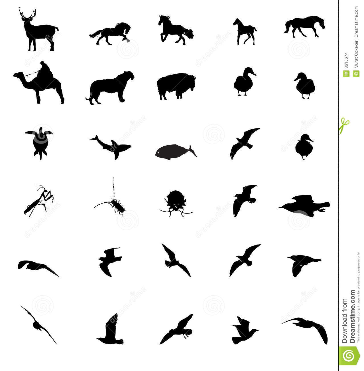 Wildlife animal silhouttes