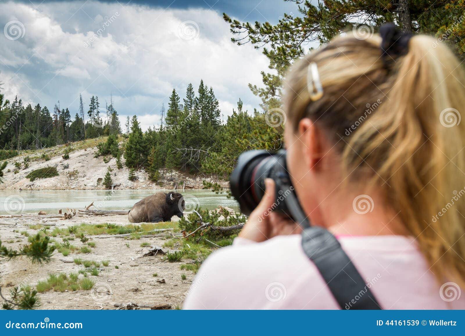 Wildlife photographer in yellowstone