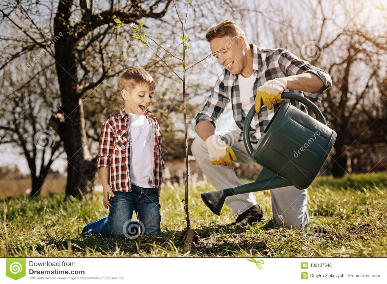 Little boy looking at young plant