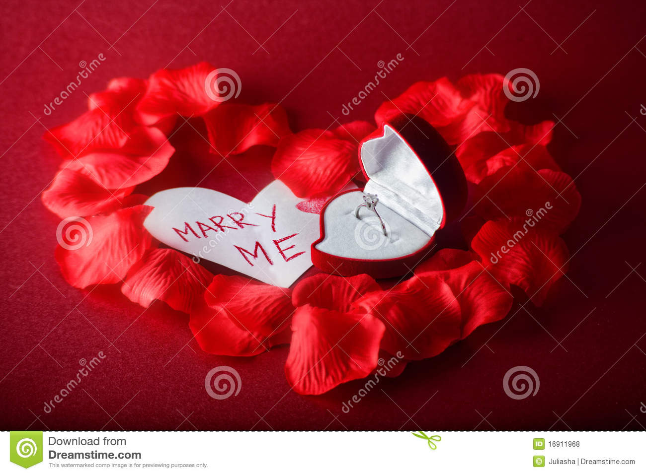 Will You Marry Me Royalty Free Stock Photos - Image: 16911968