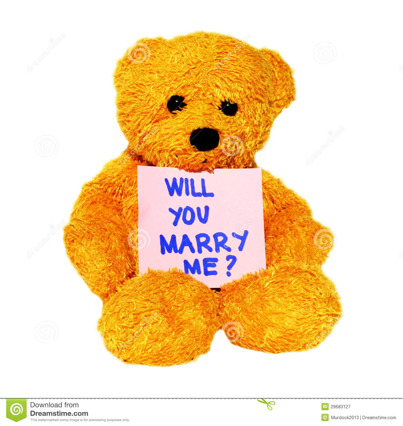 Will You Marry Me Teddy Royalty Free Stock Photography ...