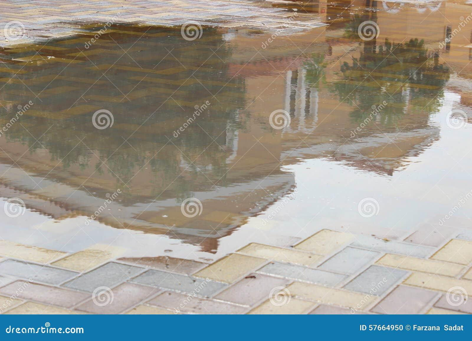 Willa na podeszczowej wodzie