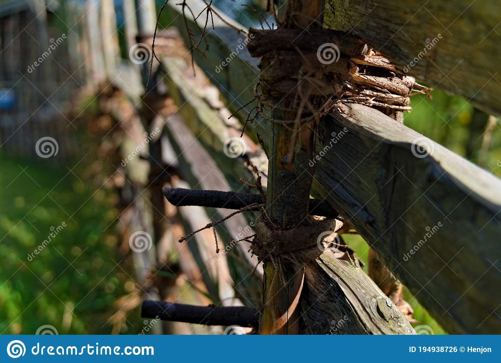 Willow Branch Fence With Wooden Poles Stock Photo Image Of Branch Area 194938726