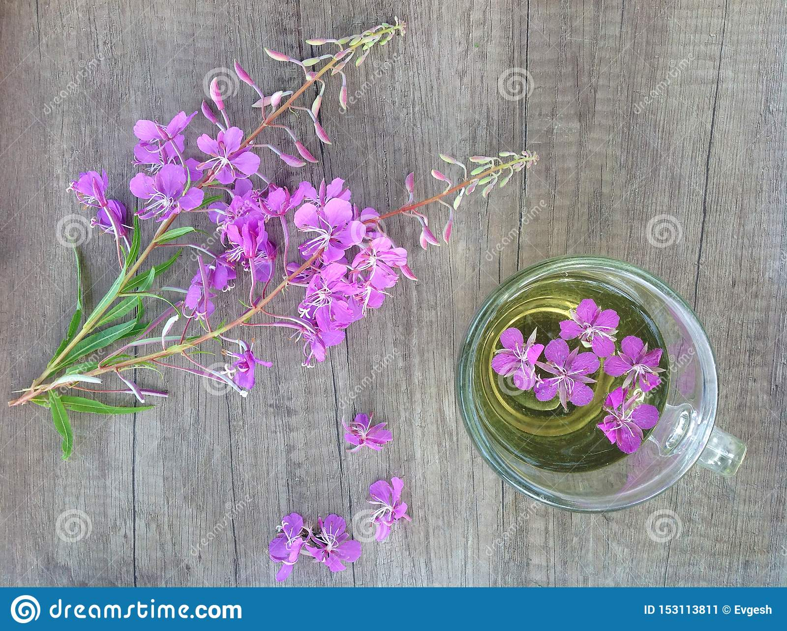 Willow herb Ivan tea in cup at the wood table workplace