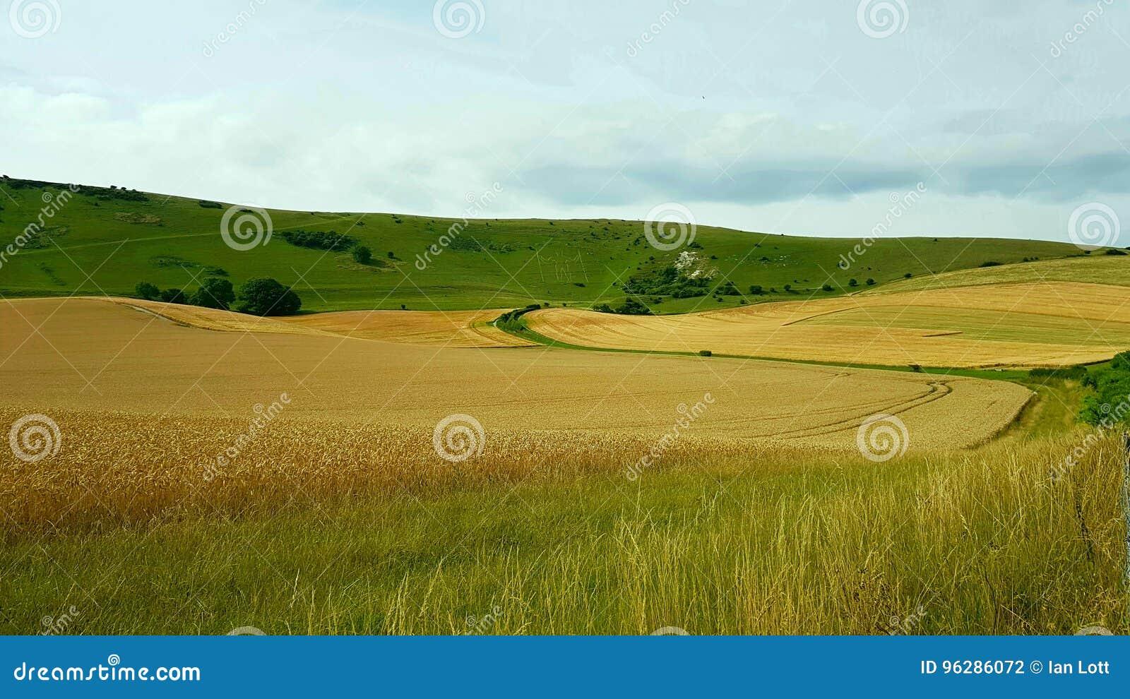 WilmingtonÂ的TheÂ长的人是aÂ在Windover小山nearÂ威明顿,东萨塞克斯郡,英国陡坡的小山figureÂ