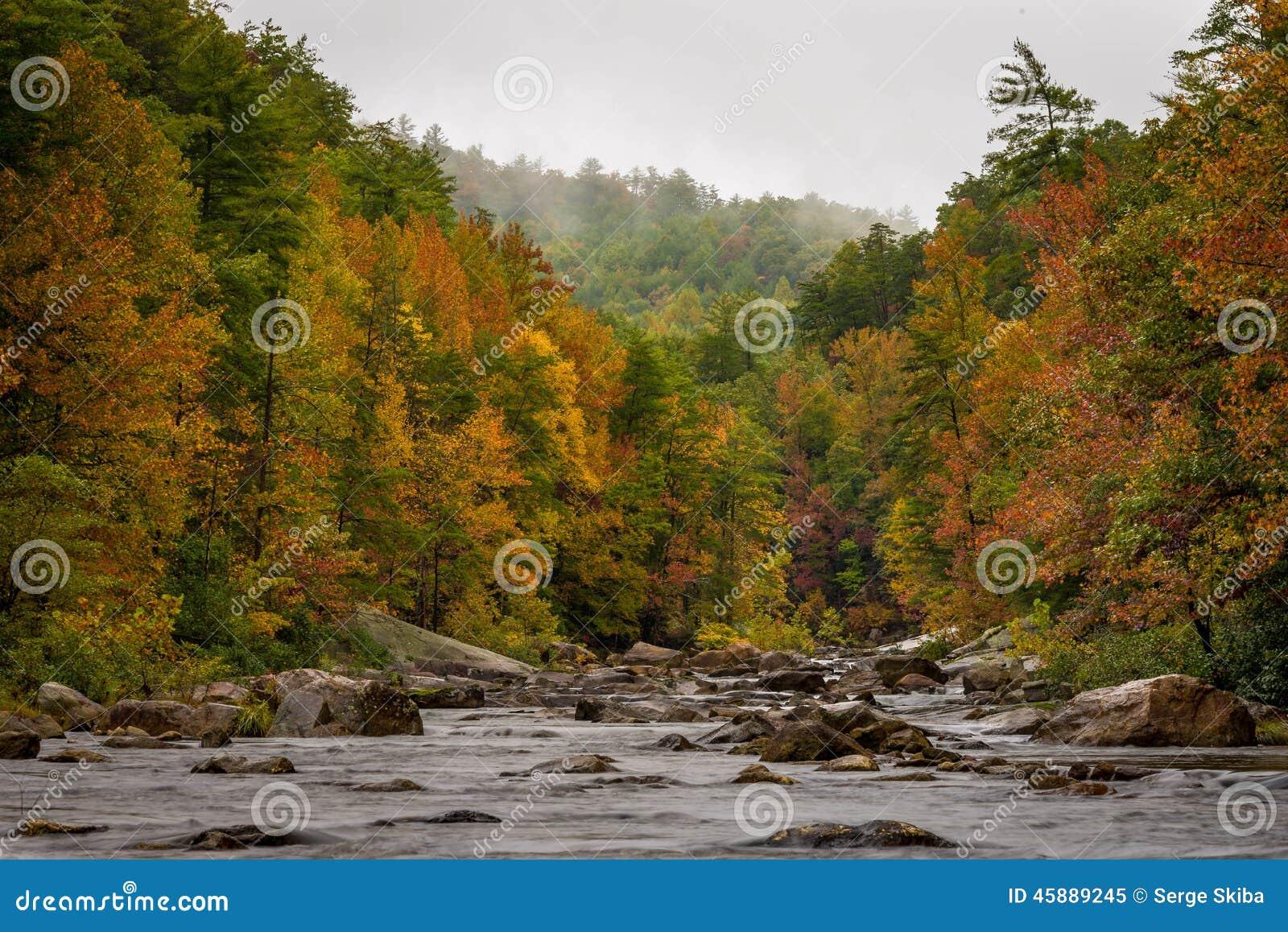 Wilson Creek Autumn 1 Stock Photo Image 45889245