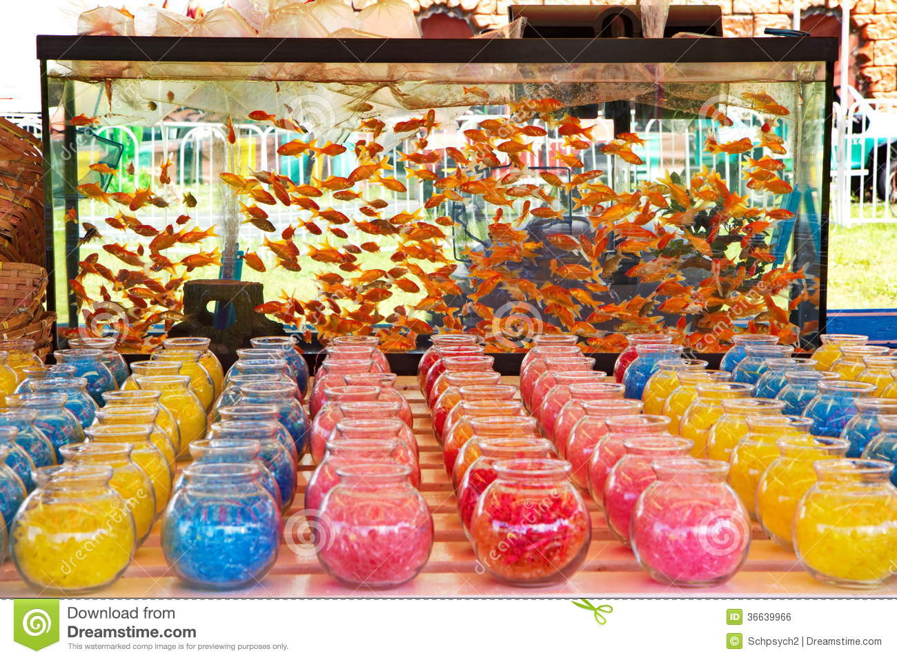 Goldfish game at a carnival fair stock photo image 36639966 for Gold fish game