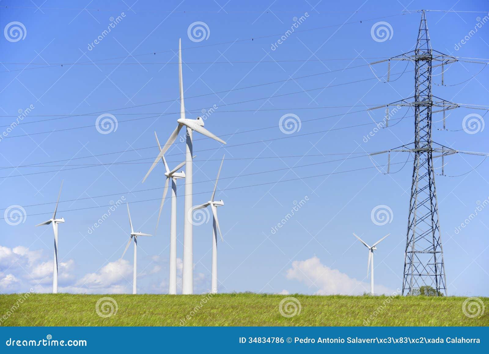 Erenewable Resource Group 24