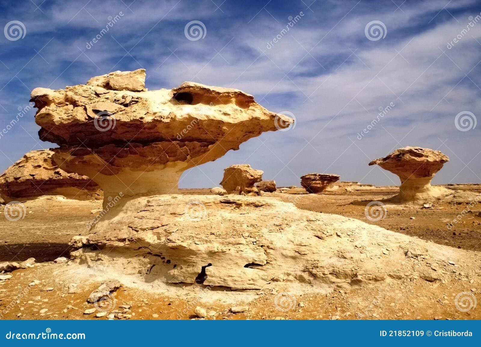 Wind gemodelleerde rotsbeeldhouwwerken in witte woestijn Egypte