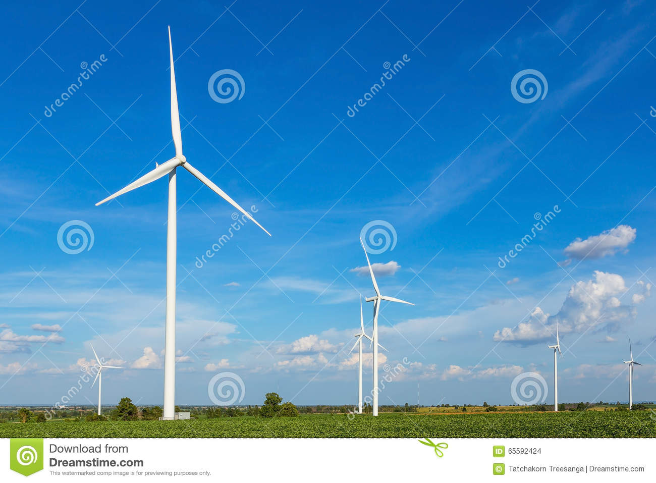 Wind turbines in the field against blue sky generating electricity