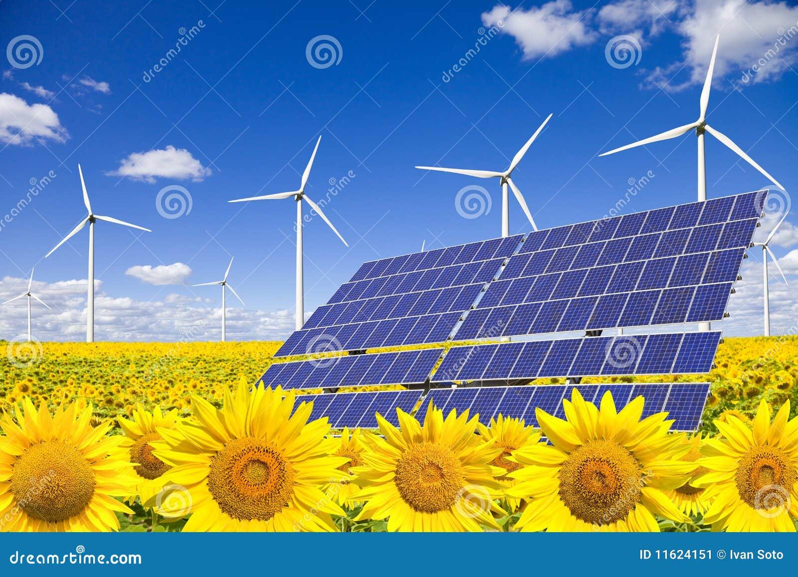 Wind Turbines And Solar Panels On Sunflowers Field Stock Image Image 11624151