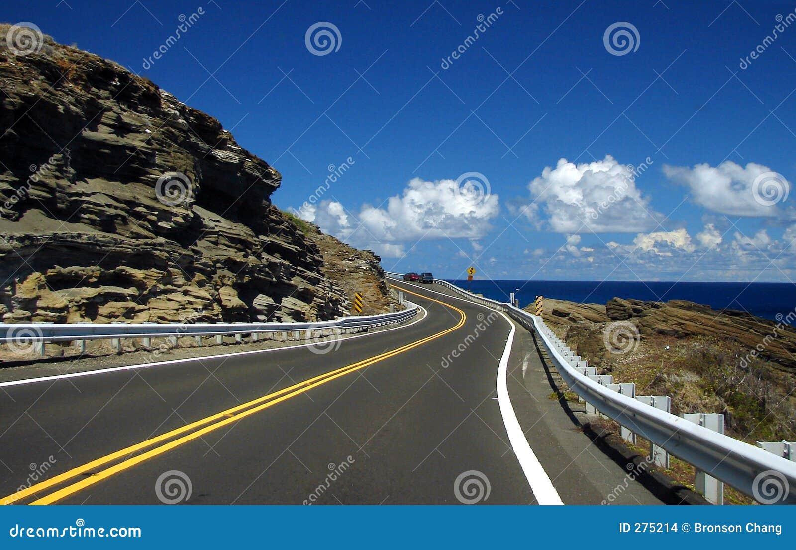 Windende Weg aan de Oceaan