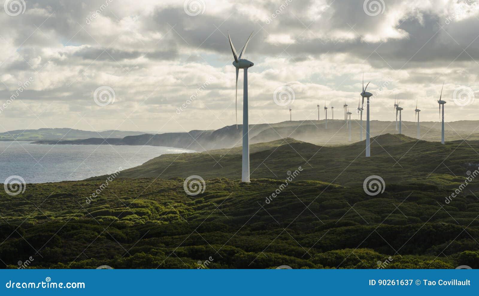 Windfarm del ` s de Albany