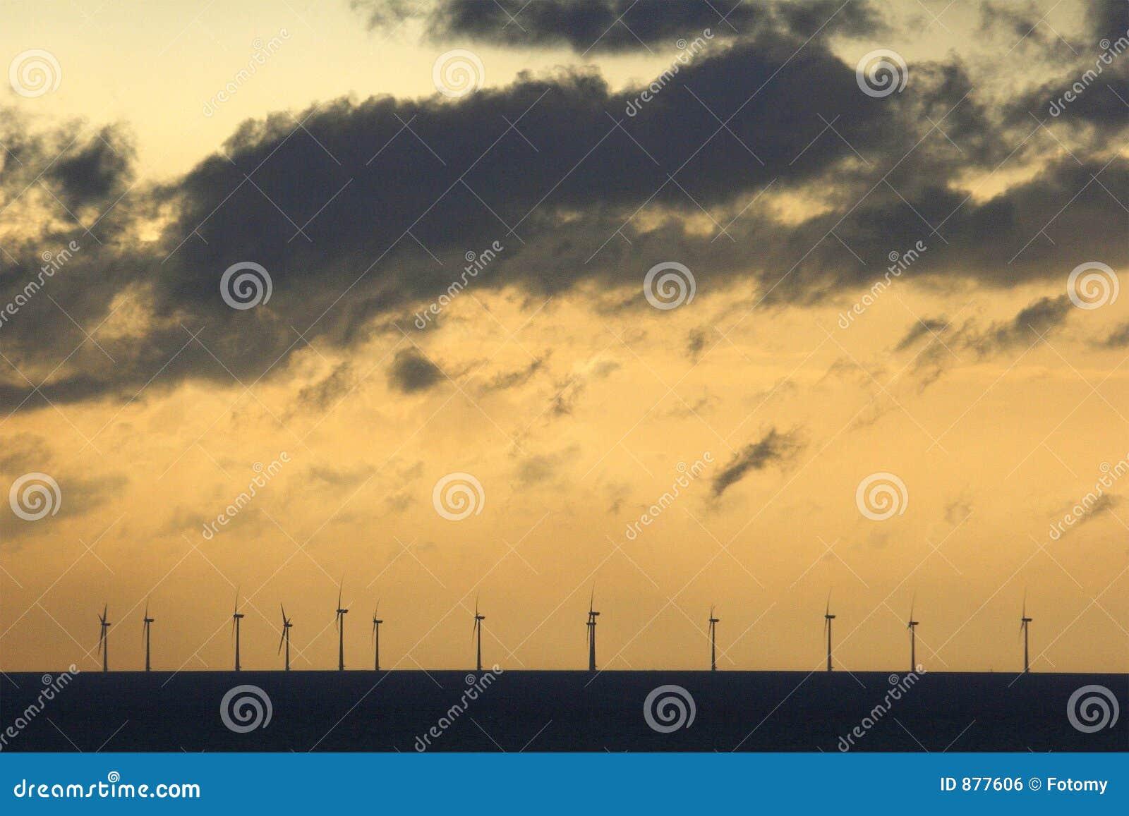 Windfarm na morzu