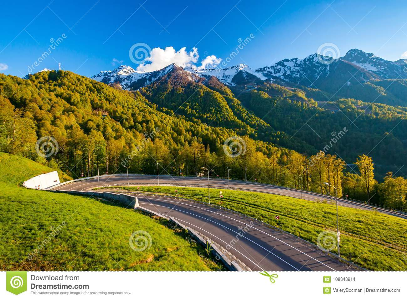 Summer spring forest mountain landscape, Sochi Russia.