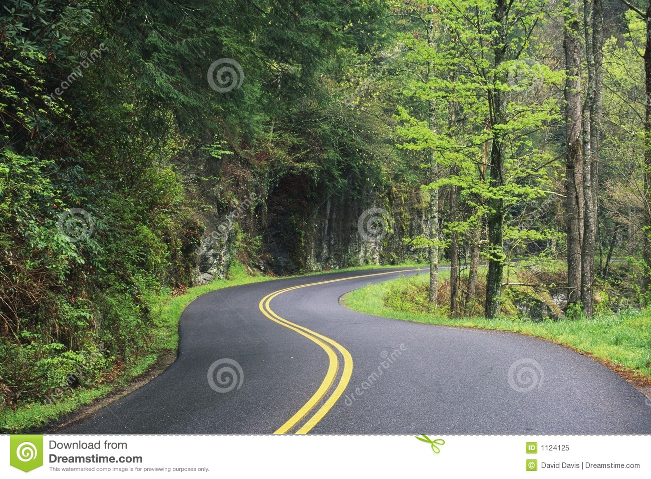 Winding Road Royalty Free Stock Photo Image 1124125