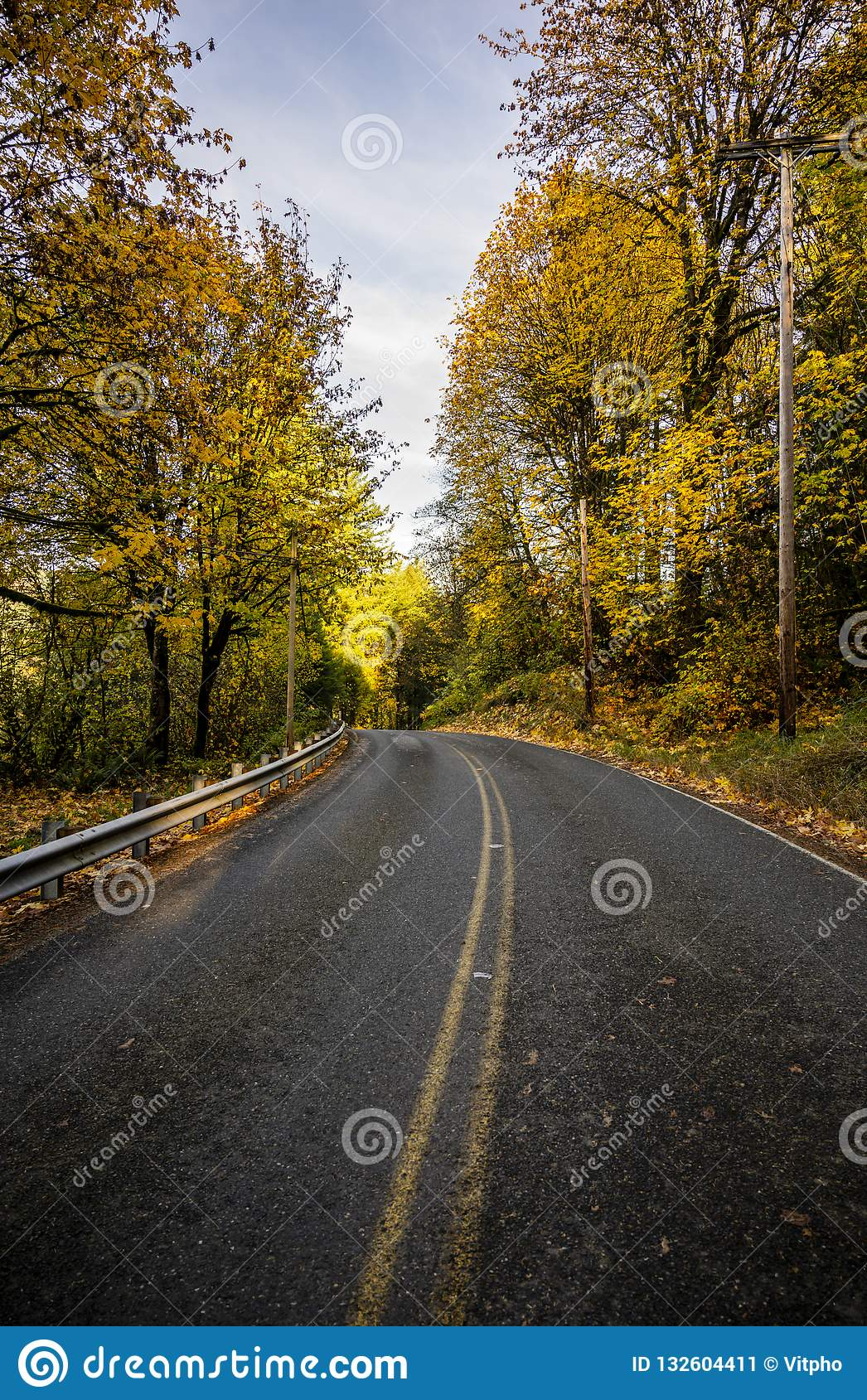 Winding Road Along Autumn Forest Stock Image Image Of Cycle Love