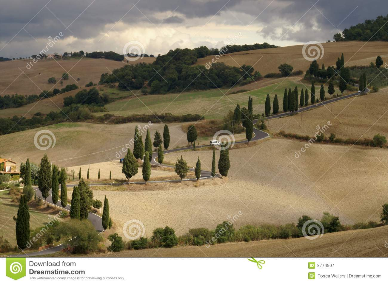 Winding road in Tuscan landscape