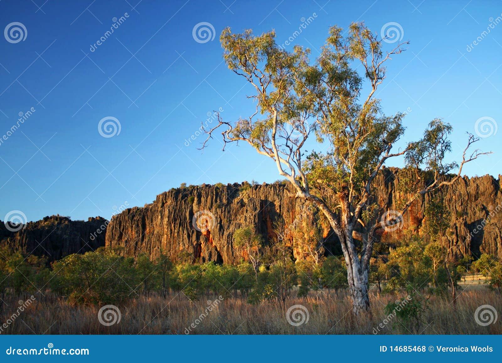 Windjana kimberley gorge