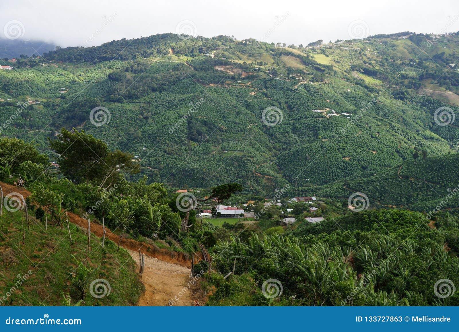 Windling wsi droga i bujny roślinność wysoka w górach Costa Rica
