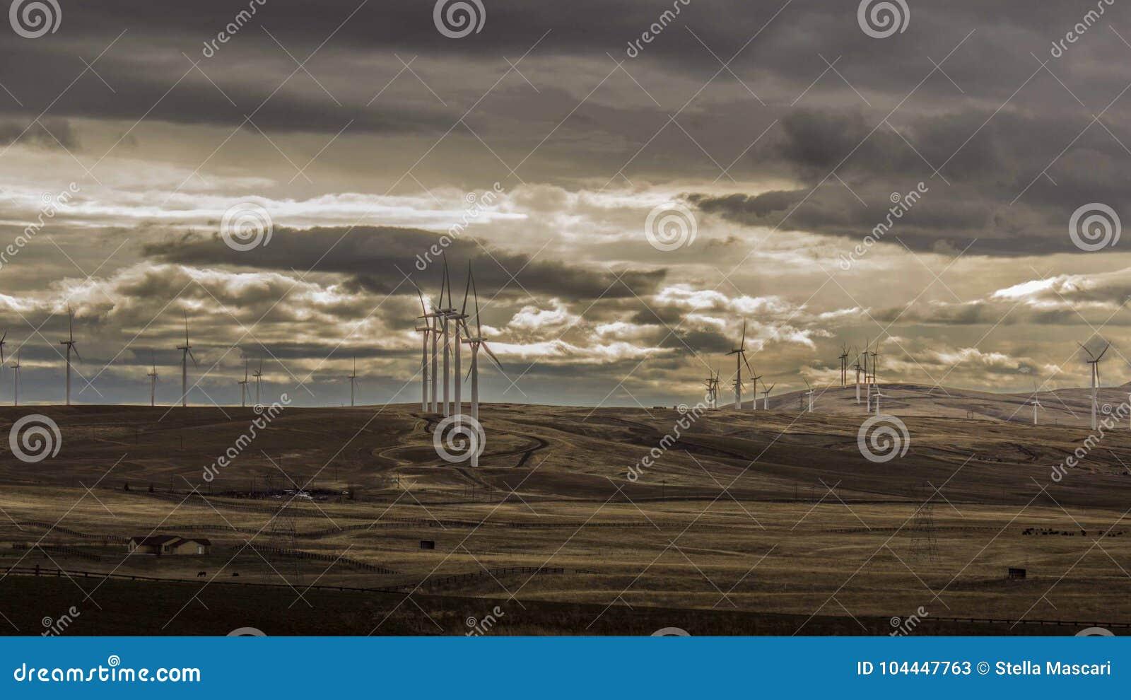 Windmühlen und Himmel