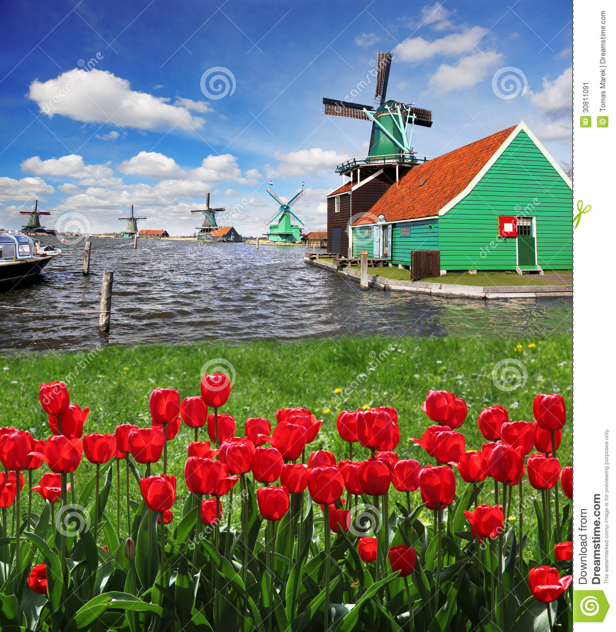 windmill in holland with canal stock image image 30811091