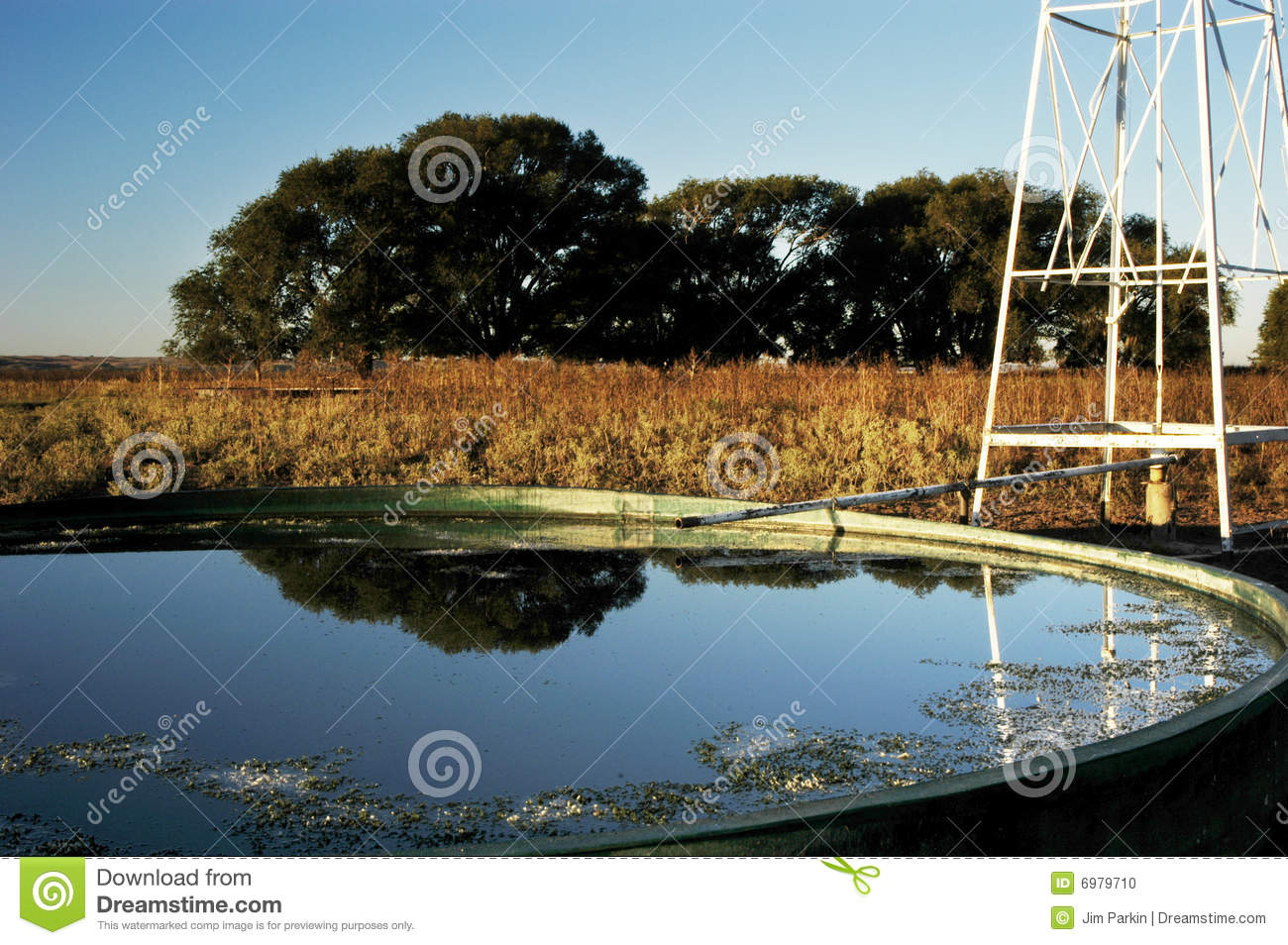 Windmill Amp Stock Tank On A Ranch In Texas Stock Photo